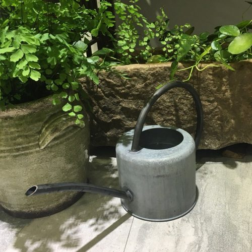 Calunce rustic retro textured gardening tools long-spout watering can (Green)