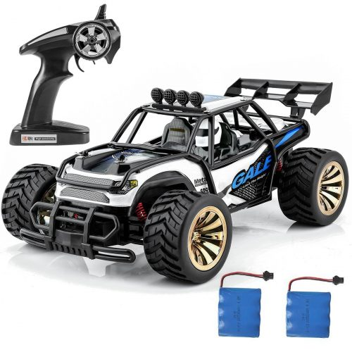 Distianert 1:16 Scale Electric RC [2.4 GHz, Radio Remote Control] Car