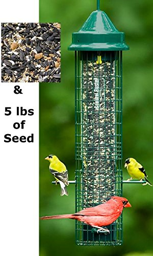 "Squirrel Buster Classic 5.3""x5.3""x32"" (w/hanger) Wild Bird Feeder with 4 Feeding Ports, 2.4lb Seed Capacity"