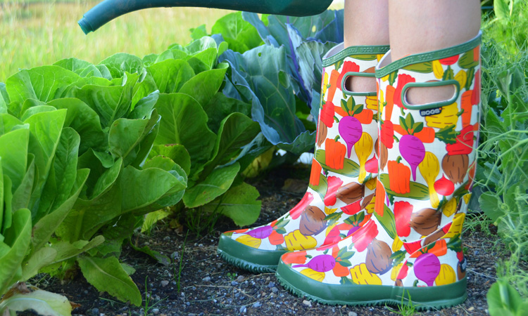 Top 10 Gardening Boots In 2020 Highly