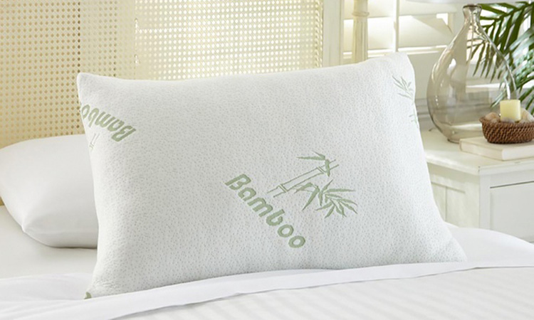 Top 10 Bamboo Pillows in 2019