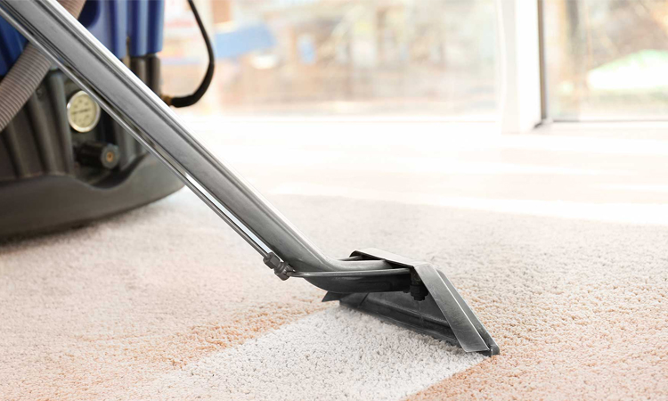 Top 10 Carpet Cleaner in 2019