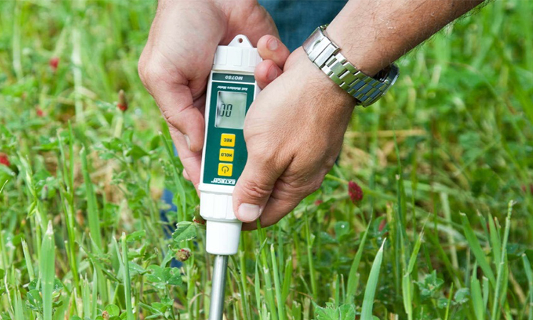 Soil Moisture Meters