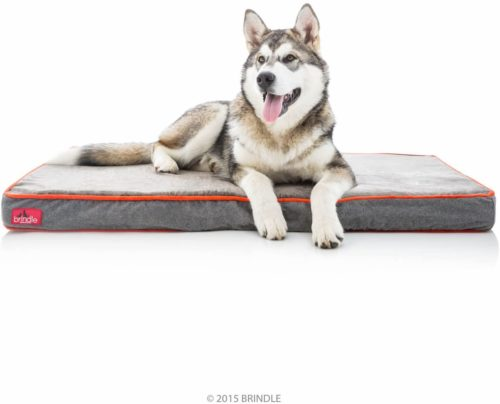 Brindle Waterproof Designer Memory Foam