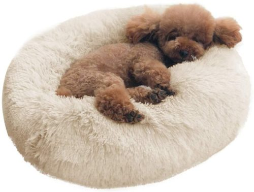 BinetGo Dog Bed