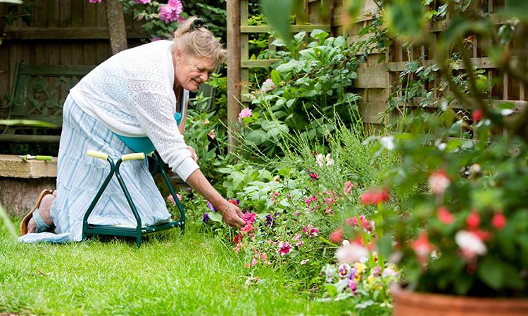 Gardening Stool